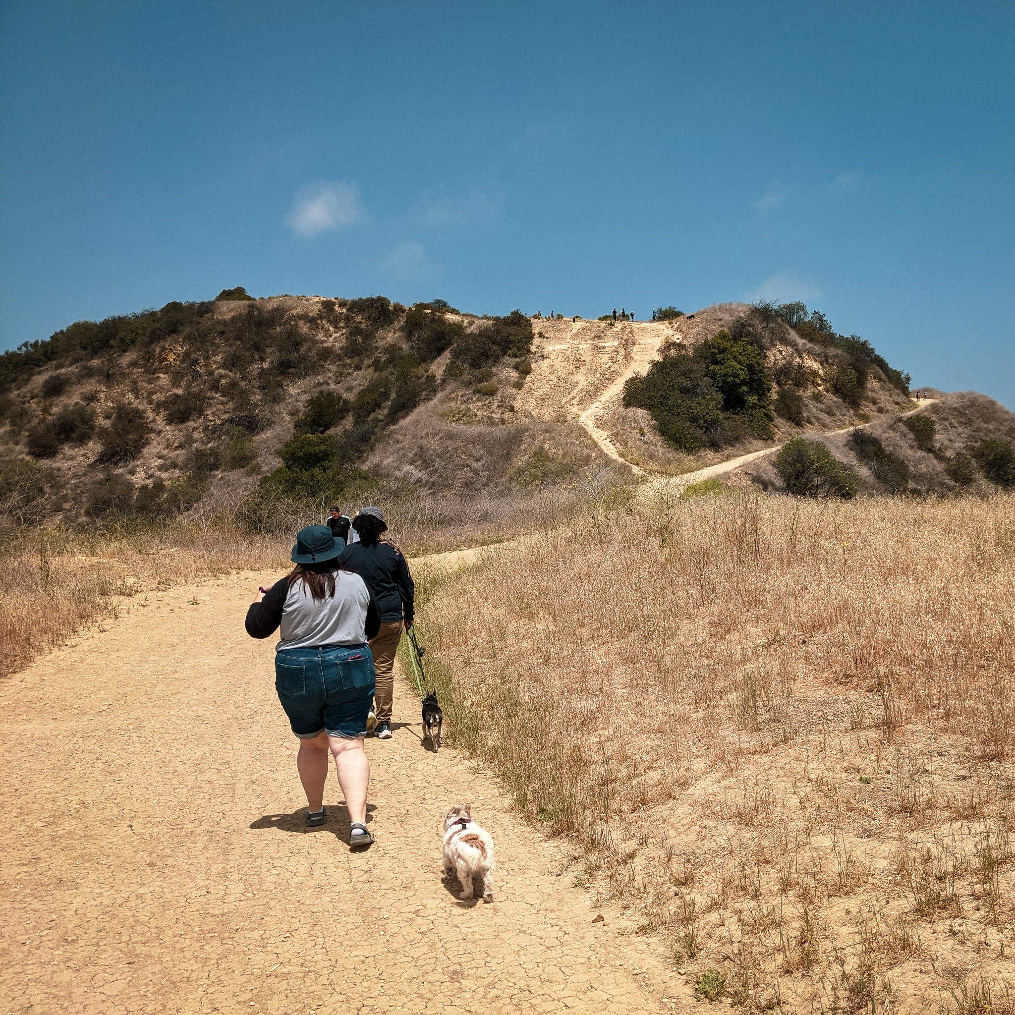 Two hikers with a dog going along a wide dirt trail at Upper and Lower Canyonback Trails in Los Angeles County