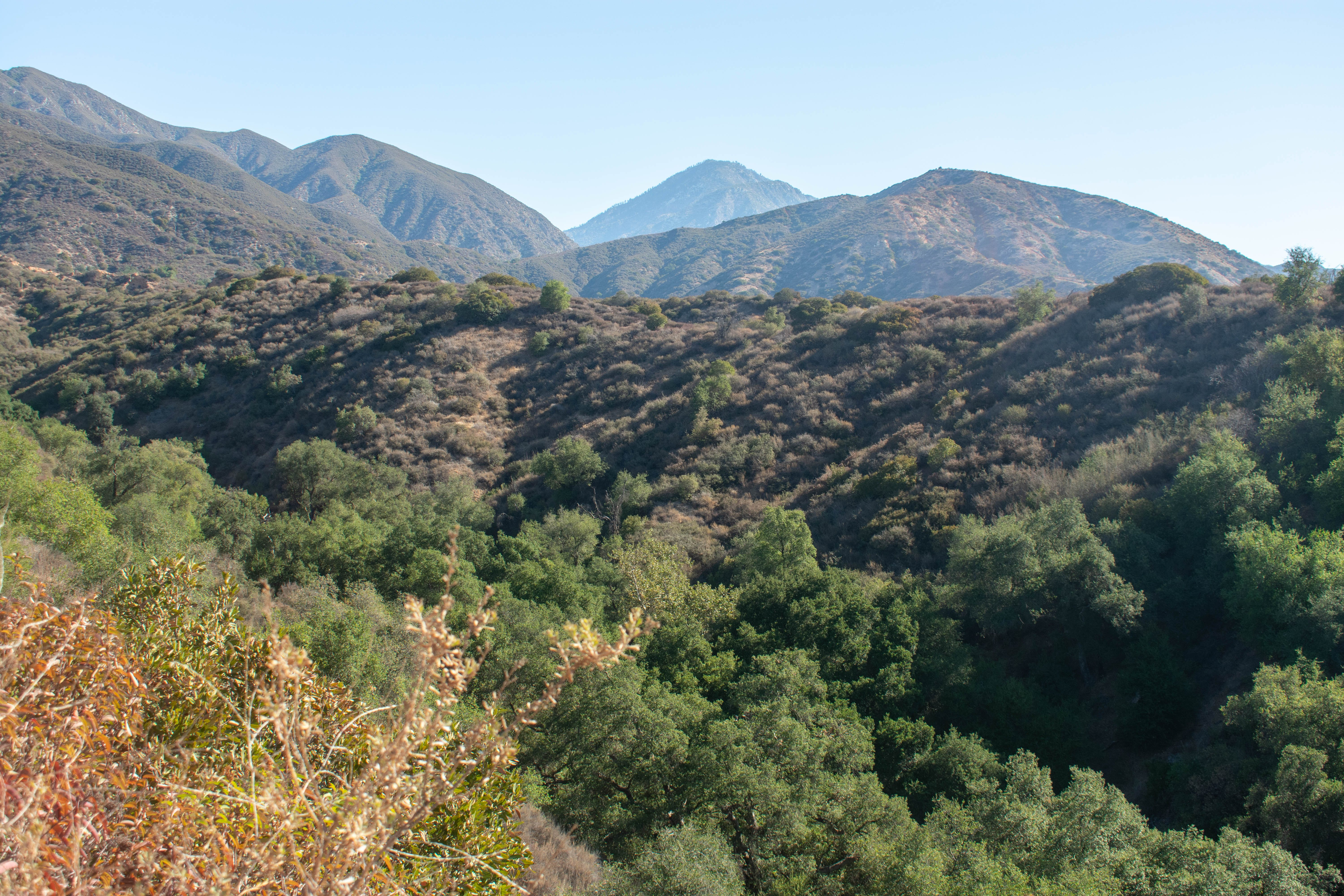 Mountainous view in Claremont Hills Wilderness Park in Los Angeles County