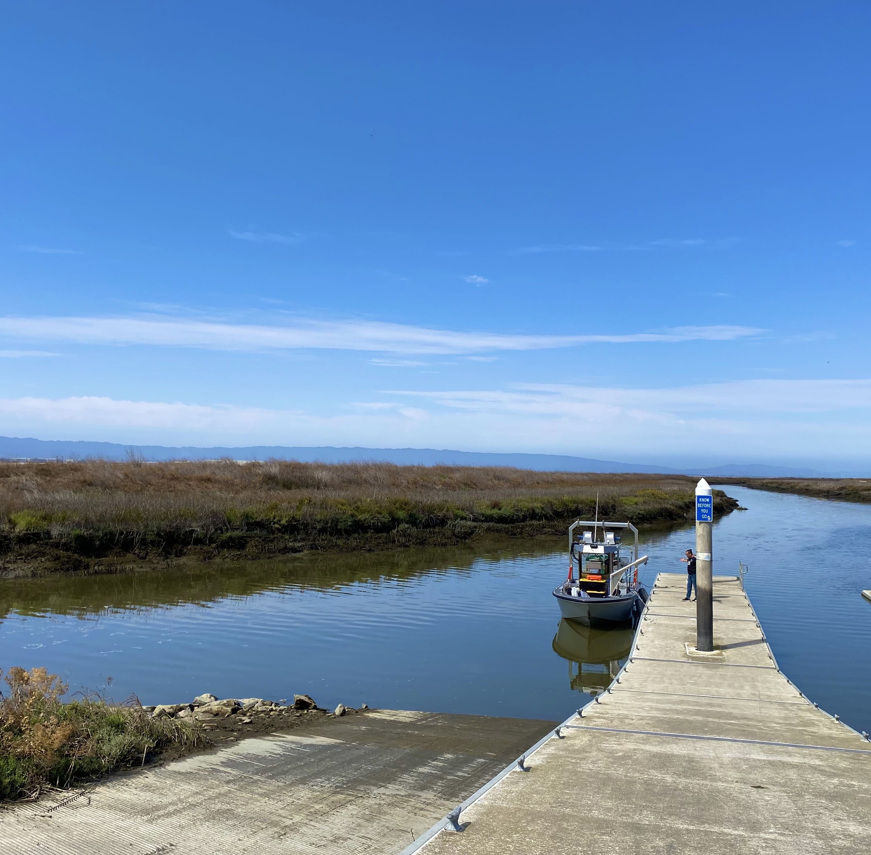 Person on the dock at the marsh along the San Jose Guadalupe River Trail