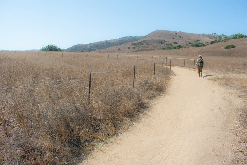 Hiker on a wide open trail at Bommer Canyon Open Space Preserve in Orange County