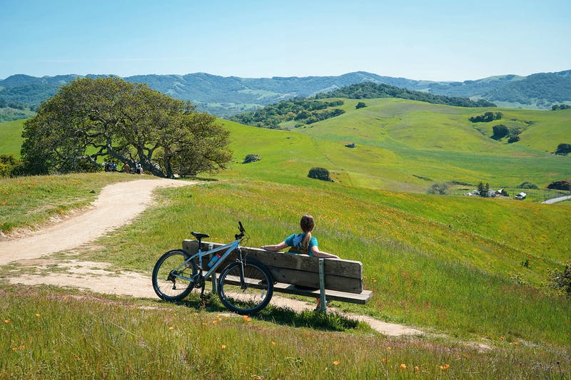 Woman sitting at a bench overlooking the fields and foothills at Helen Putnam Regional Park near Petaluma.