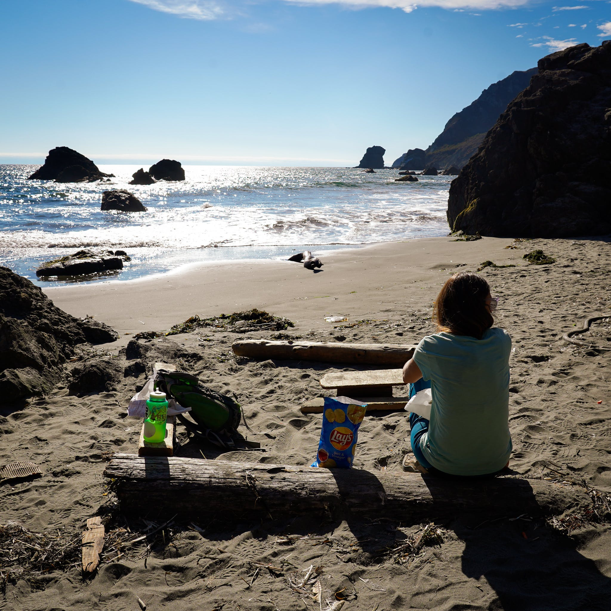 Woman sitting on driftwood and looking out to the ocean at Pirates Cove hike-in beach in the Marin Headlands