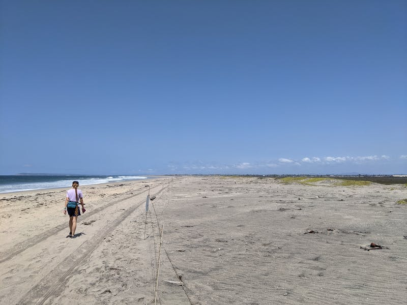 Woman hiking along the vast and open beach at Border Field State Park in Southern California