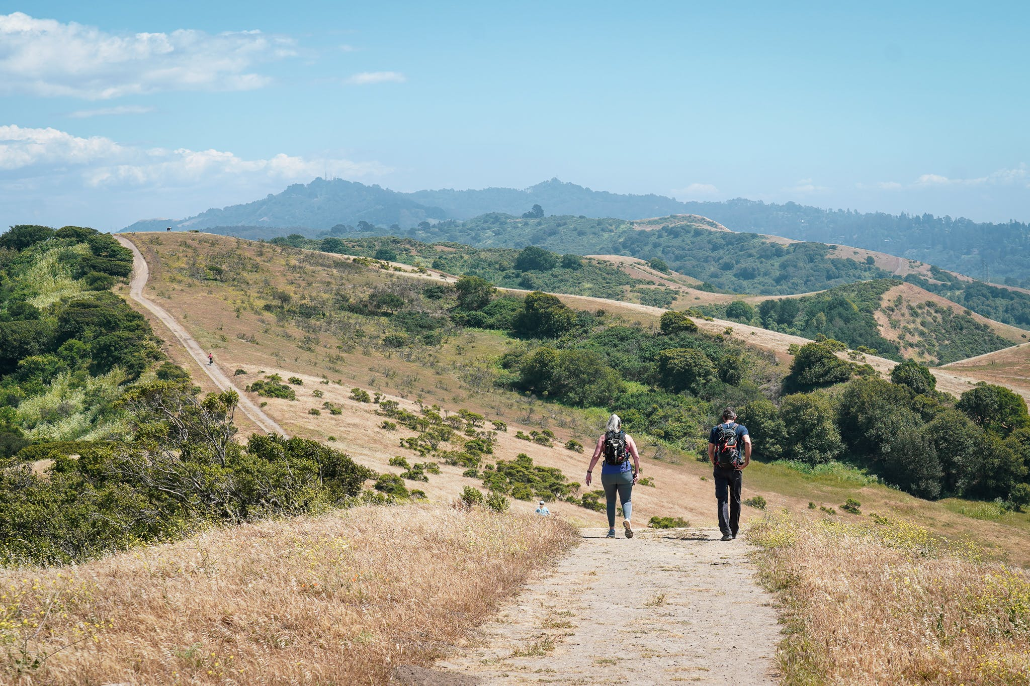hiking on San Pablo Ridge Trail in Wildcat Canyon