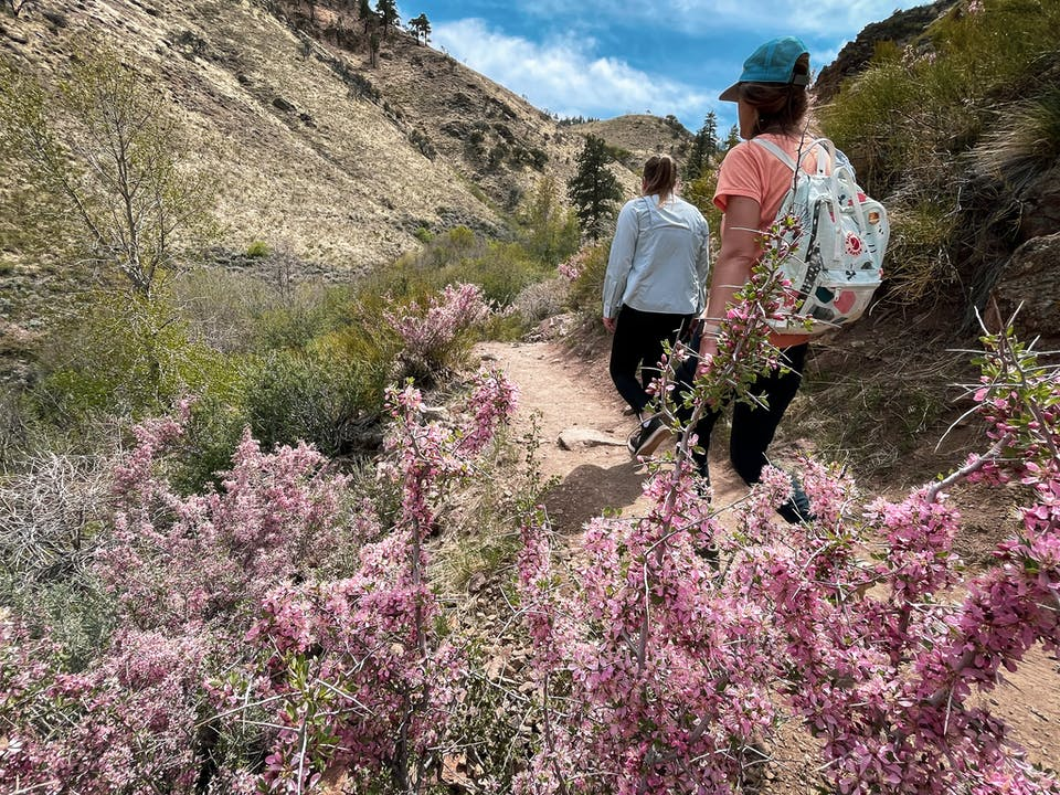 Two Hikers at Hunter Creek Falls