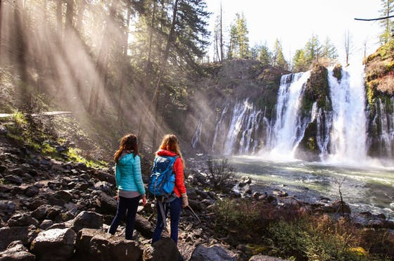 2 people looking at a waterfall in a forest