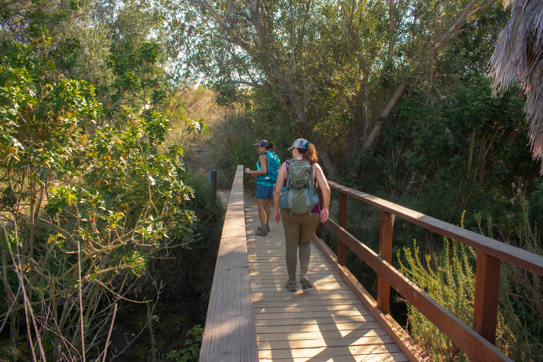 Two hikers walking along a boardwalk bridge at Upper Newport Bay Nature Preserve in Orange County