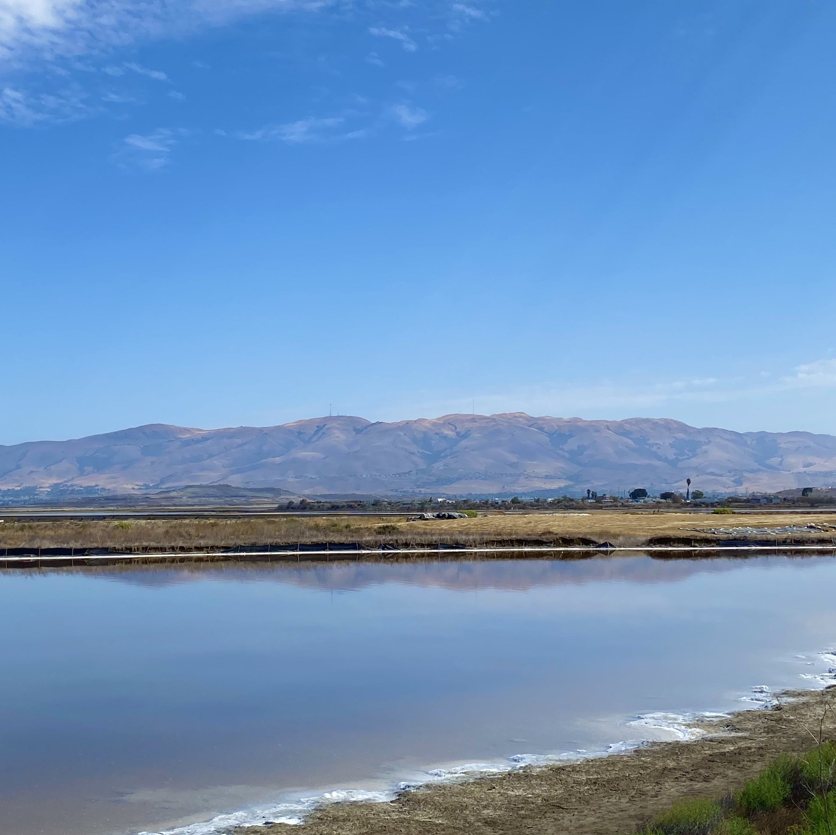 Water scenery along the Guadalupe River Trail in San Jose with mountain ranges in the background