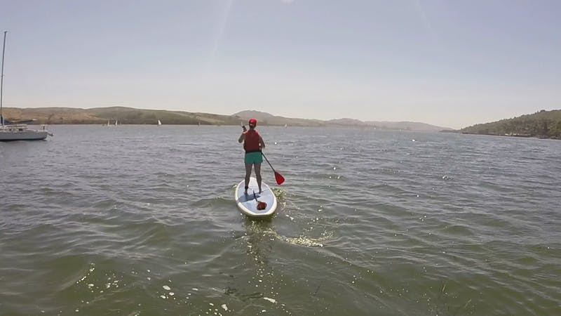 Stand-up paddleboard tomales bay