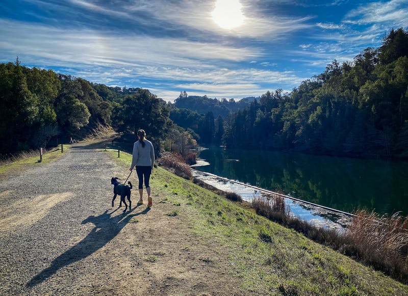 Woman and dog hiking by the water at Mount Tam in Marin