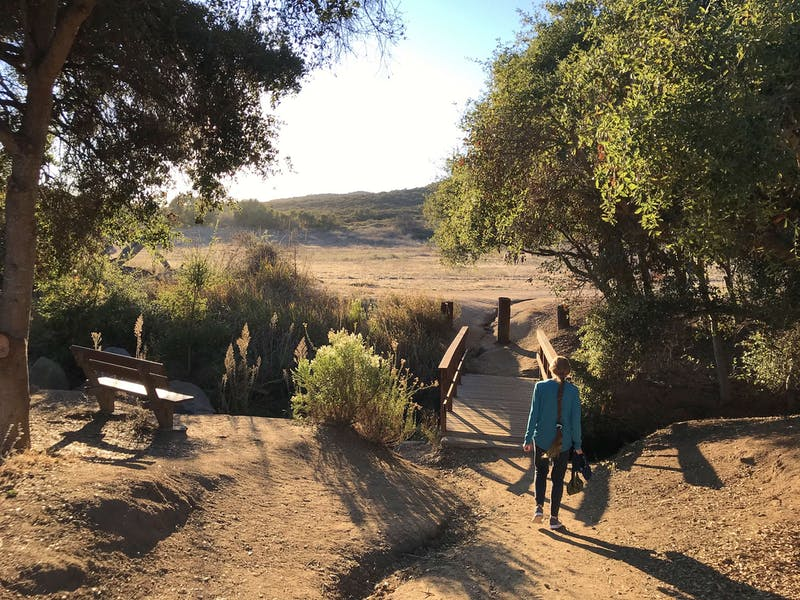 Hike Buena Vista Park In San Diego County