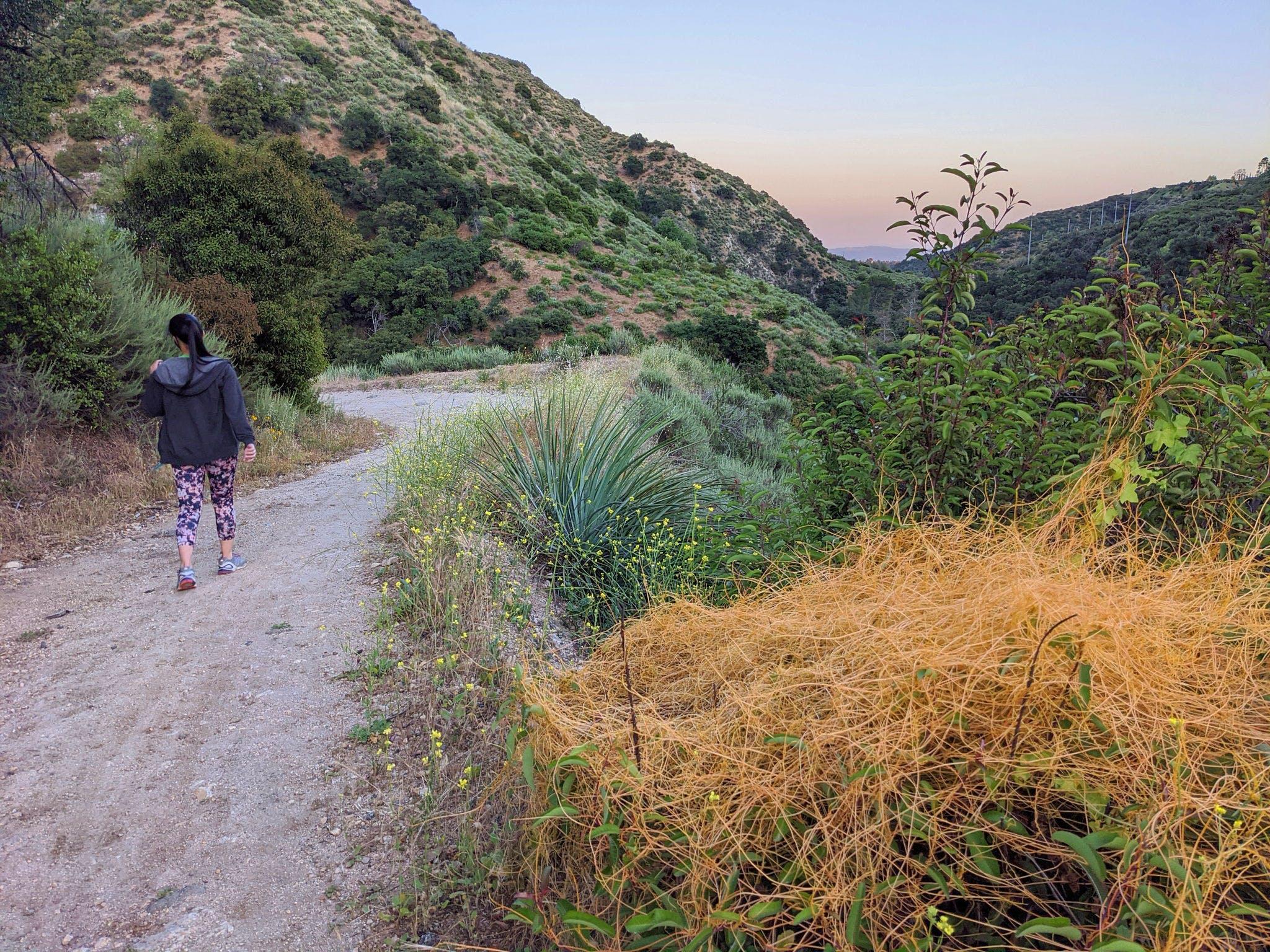 Woman hiking a trail to Gould Mesa Trail Camp