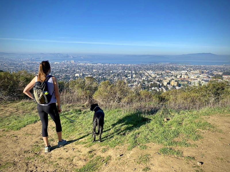 Woman and her dog looking out to view of the Bay at Claremont Canyon Preserve in the East Bay