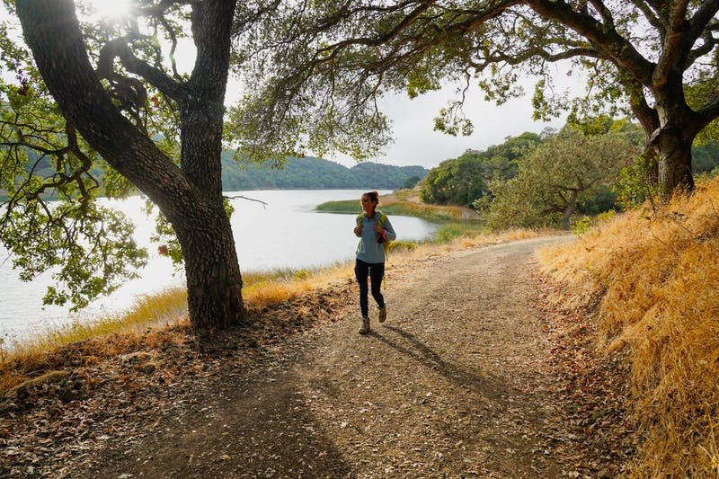 Hike the Oursan Trail at Briones Reservoir