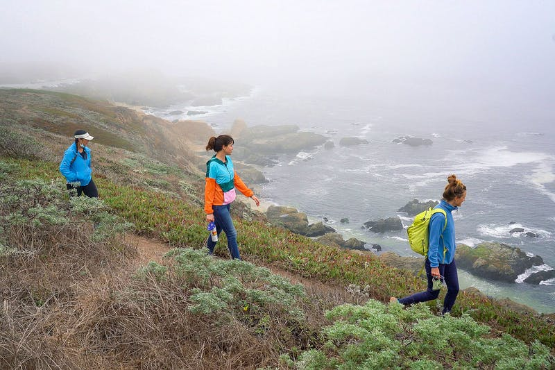 Hike Bodega Head to Salmon Creek Beach on the Sonoma Coast
