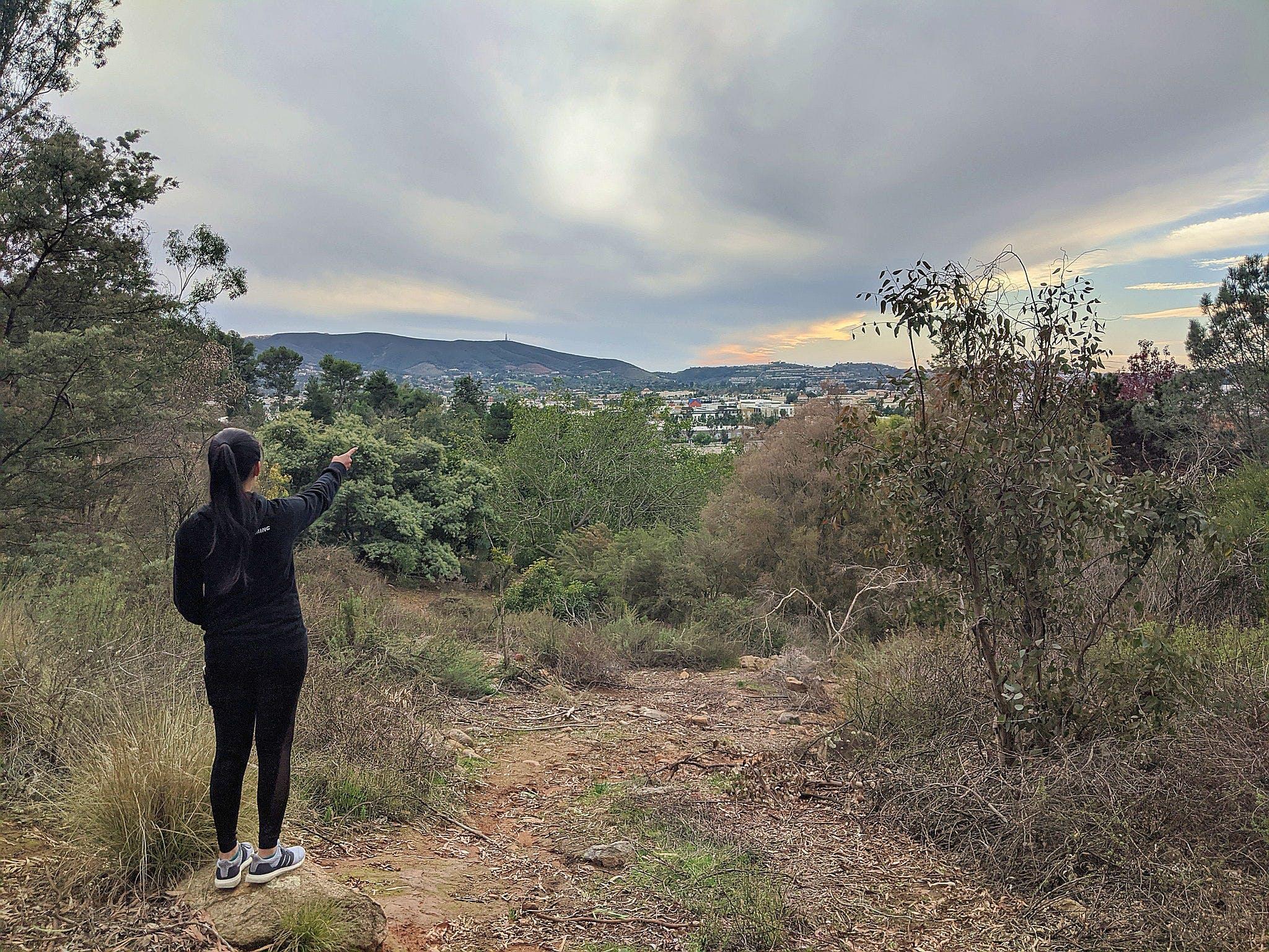 Hike Palomar Arboretum
