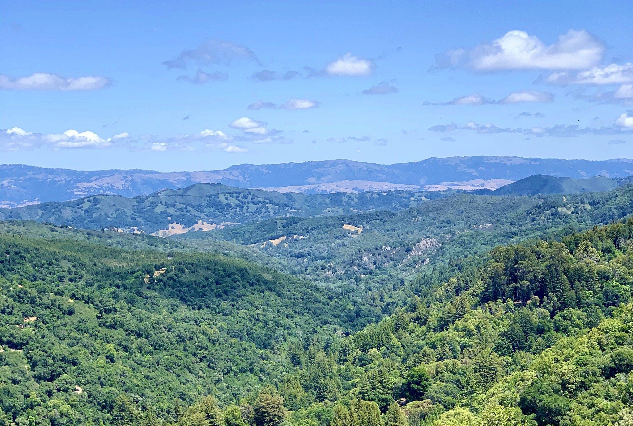Viewpoint overlooking the Santa Cruz Mountains in Uvas Canyon County Park