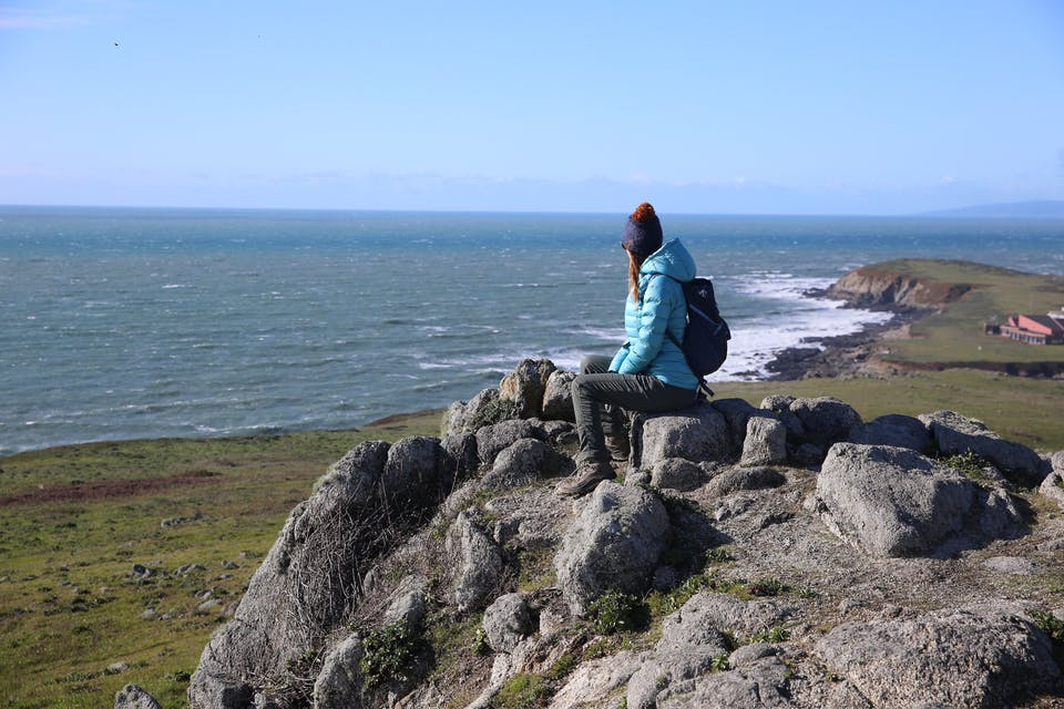 Hike and Whale Watch at Bodega Head