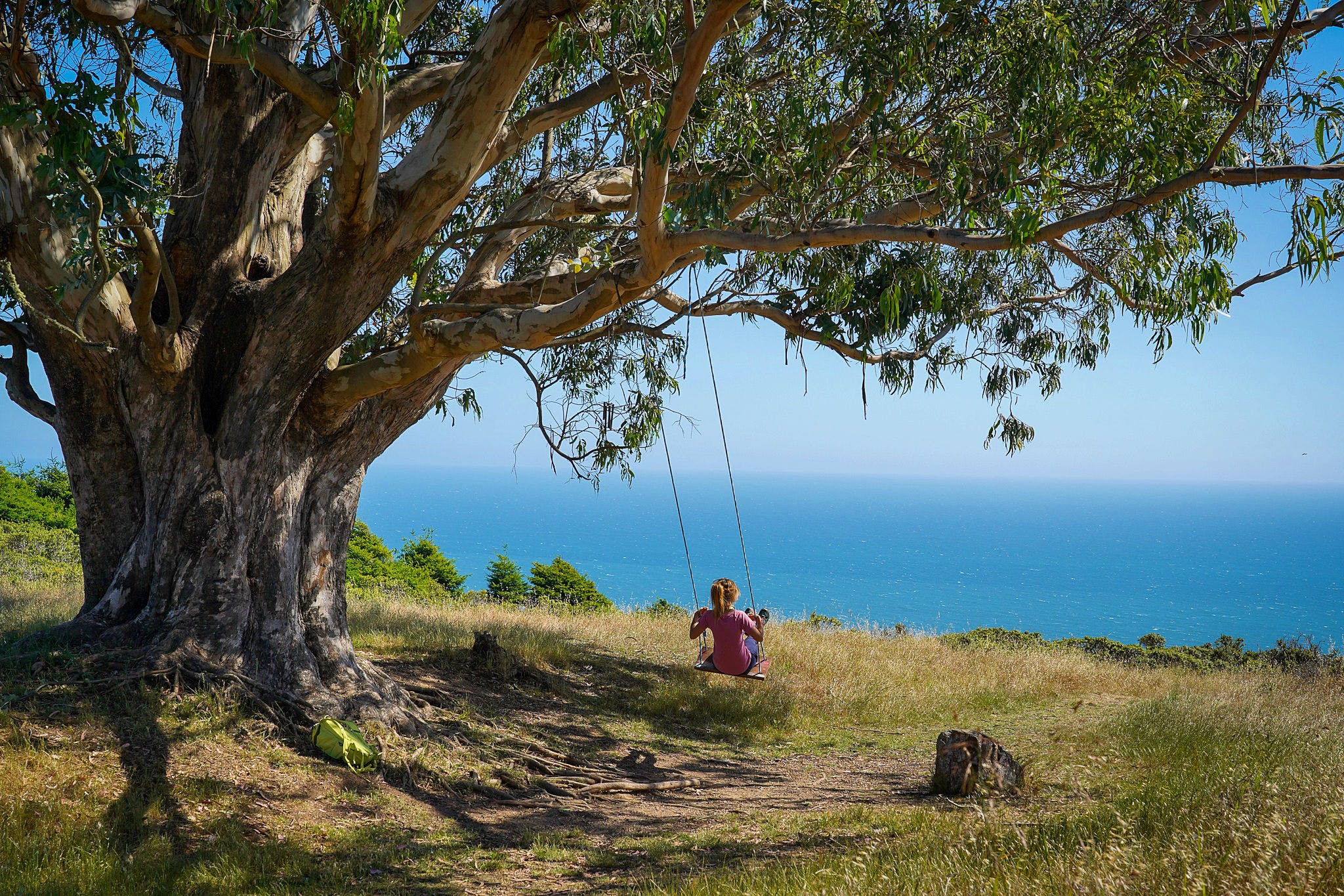 Woman on a tree swing overlooking the pacific