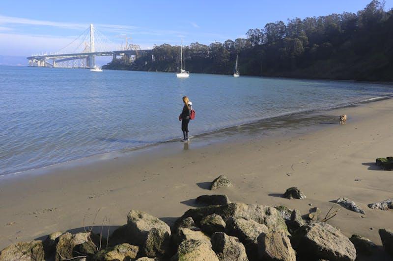 Treasure Island Clipper Cove Beach San Francisco Bay