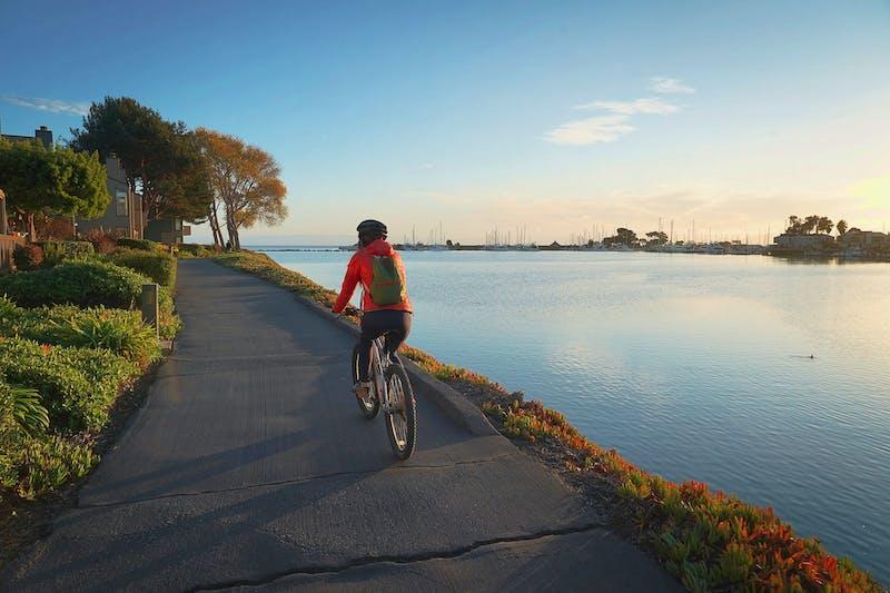 Biking in Alameda