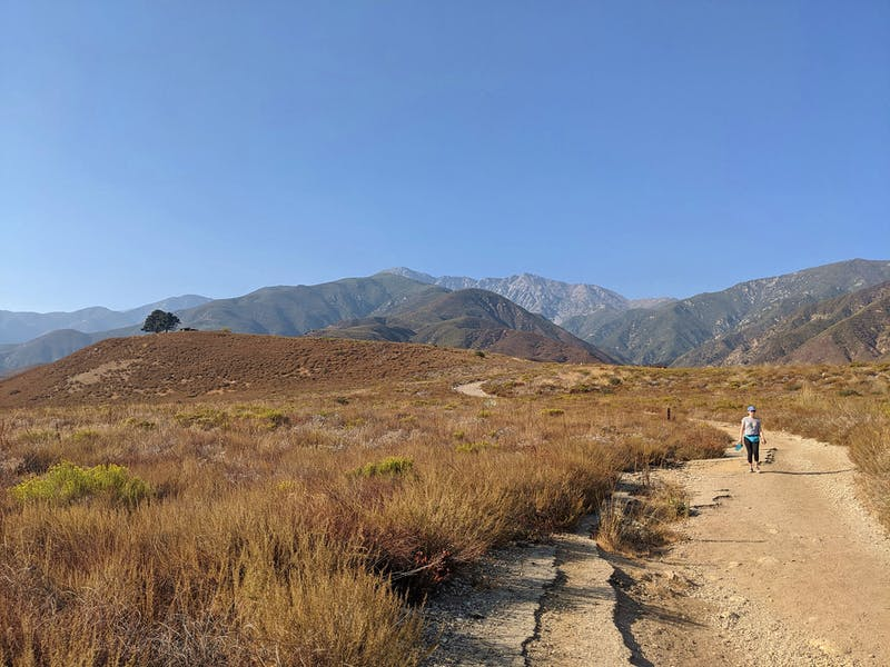 Hike the North Etiwanda Preserve at the foot of the San Gabriels.