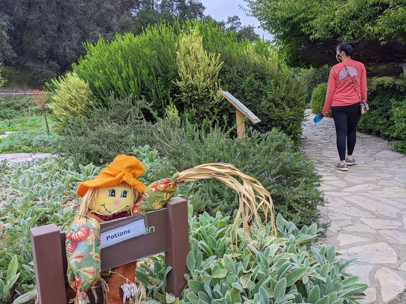 Ghoulish Gardens at the Los Angeles Arboretum and Botanic Garden