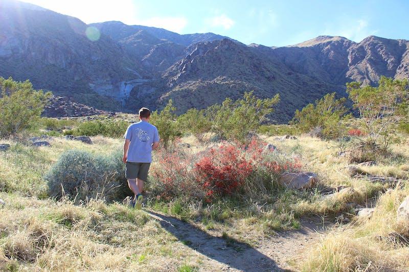 Hike Tachevah Canyon