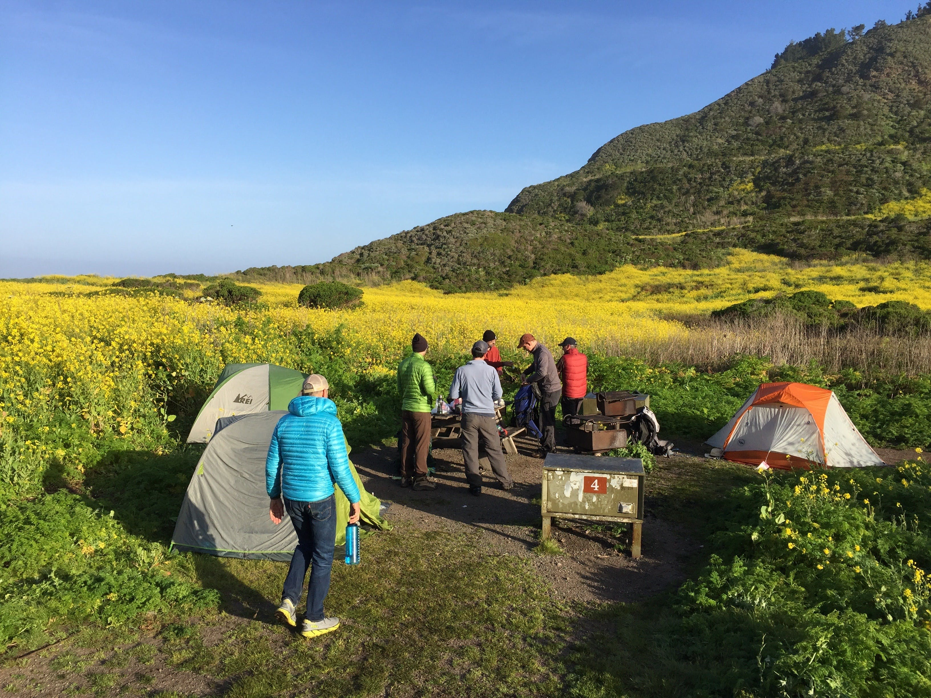 Friends set up a group camp with multiple tents at Wildcat Camp in Point Reyes National Seashore