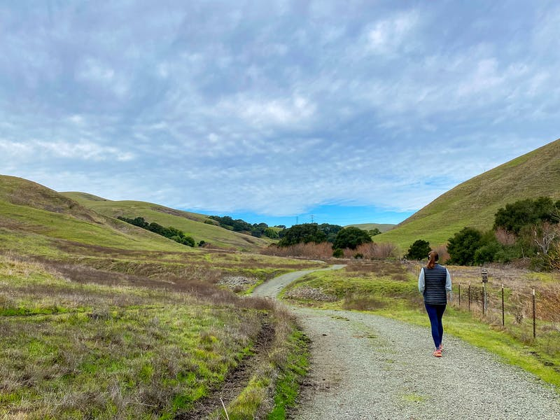 Hike Lynch Canyon Open Space in Solano County