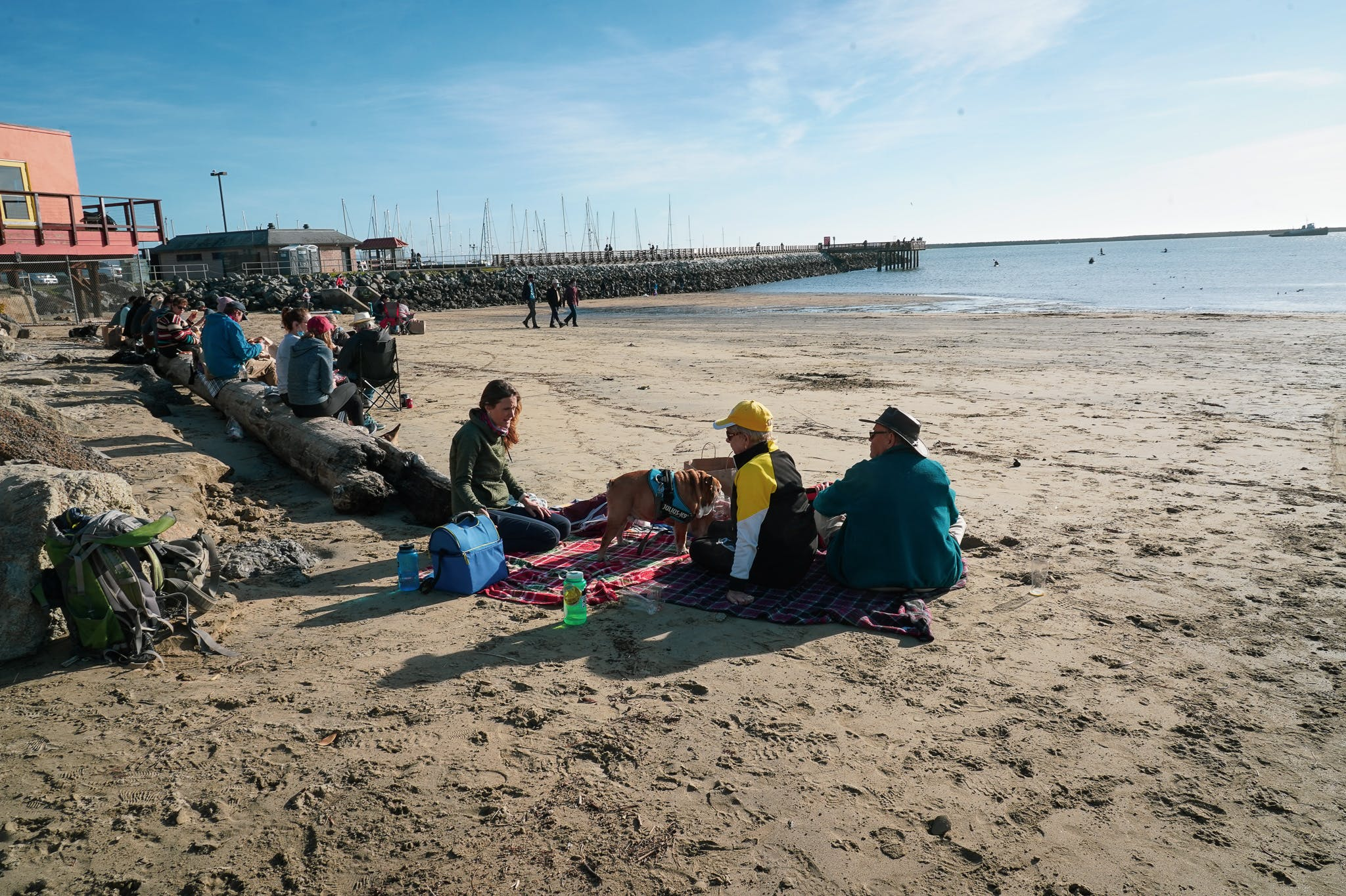 Three people and a dog sitting on a blanket at the beach in front of Barbar