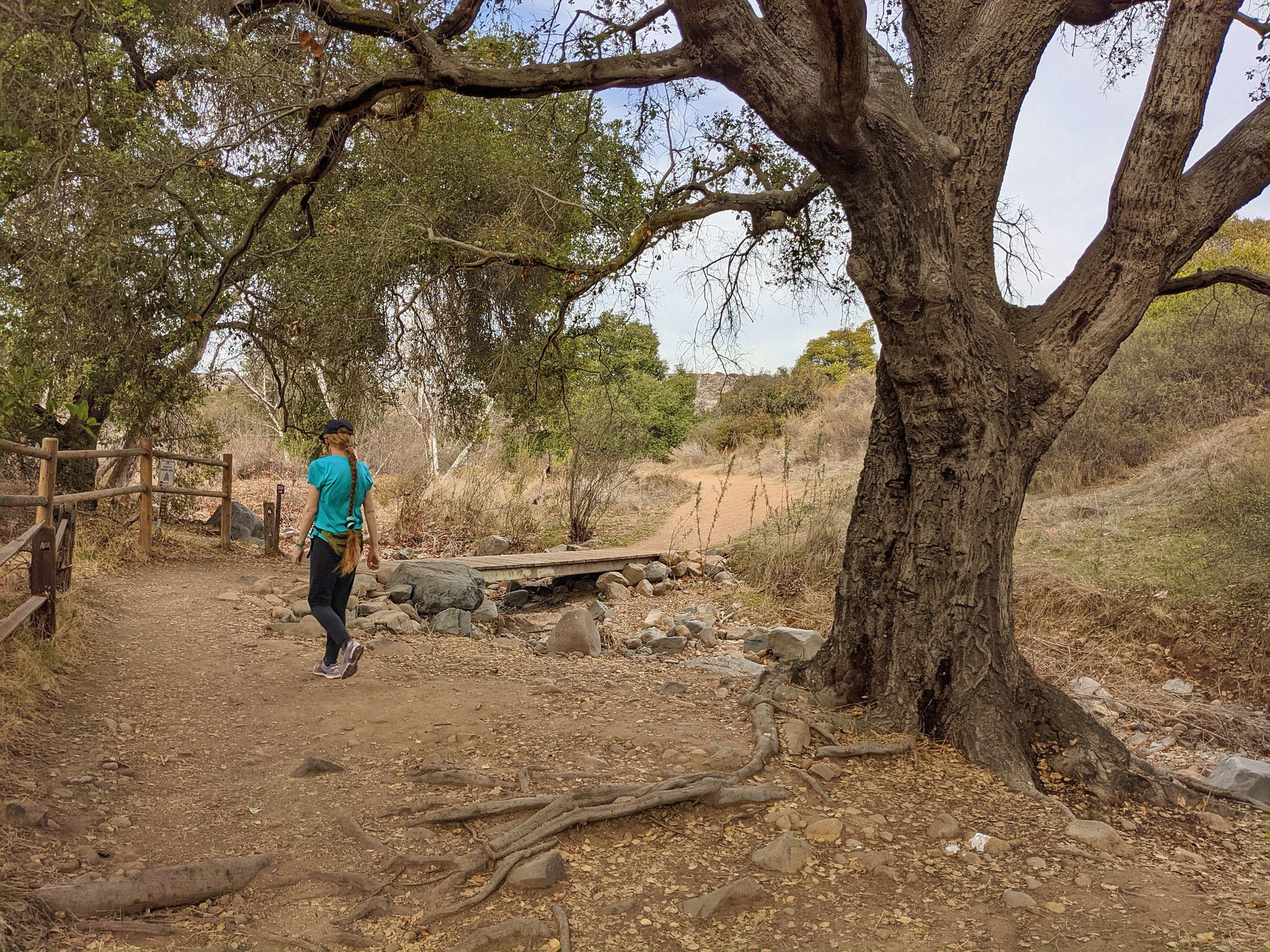 Woman walking past a large oak tree at Mission Trails Regional Park in San Diego