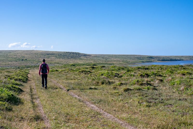 Hike Bull Point Trail in Point Reyes National Seashore
