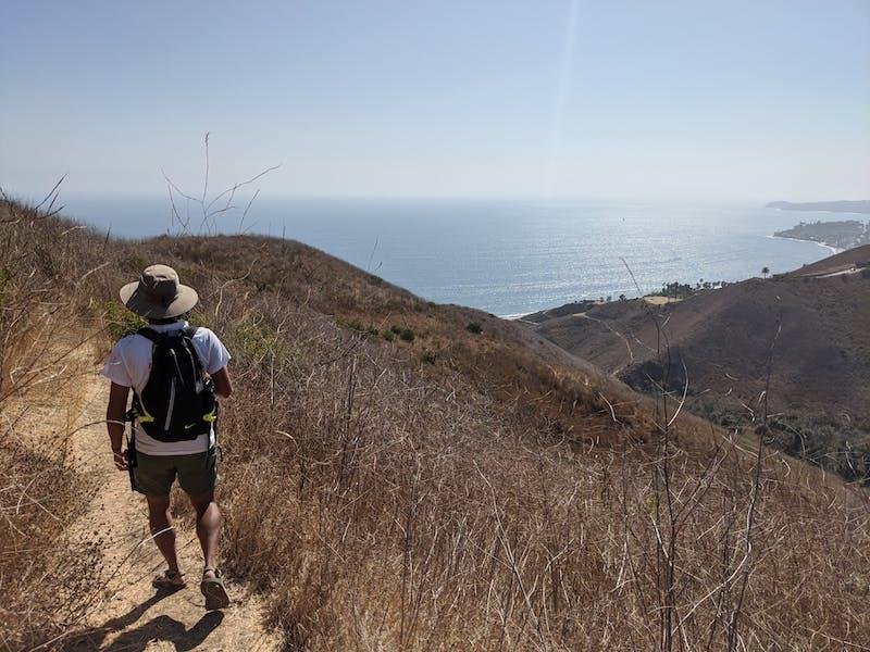 Hike Corral Canyon Park in Malibu