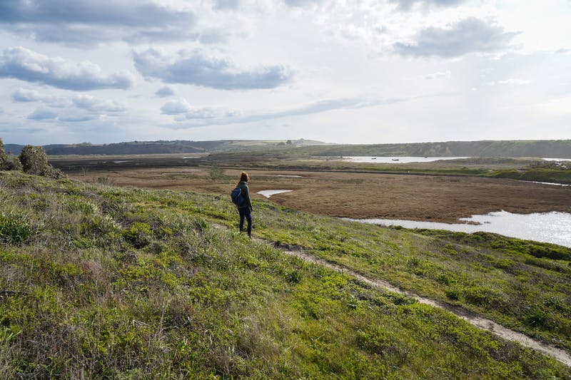 Hike Pescadero Marsh Natural Preserve