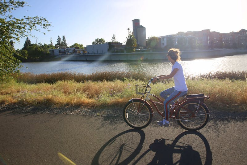 Bike the Napa Valley Vine Trail & Grab Beers at Stone Brewing