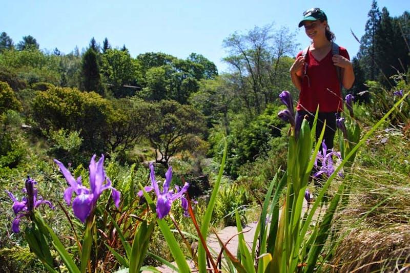 Tilden Botanic Garden