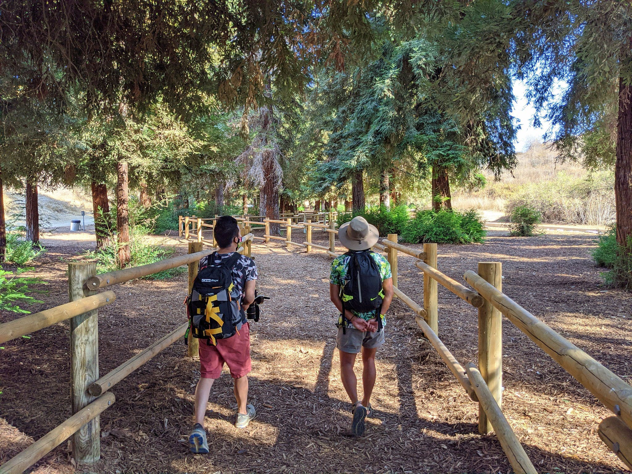 Two hikers among redwoods in Carbon Canyon Regional Park in Orange County