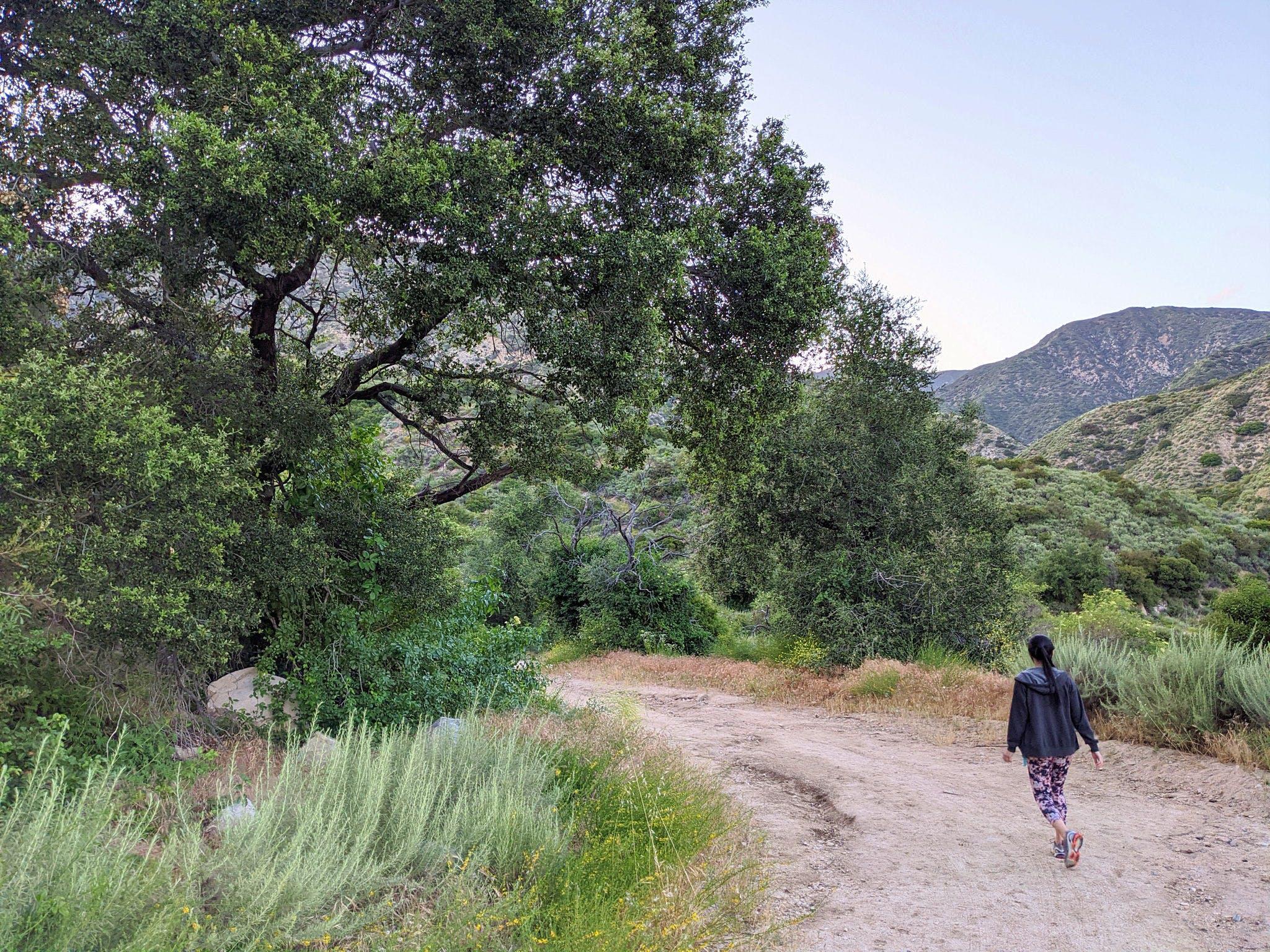 Gould Mesa Trail Camp