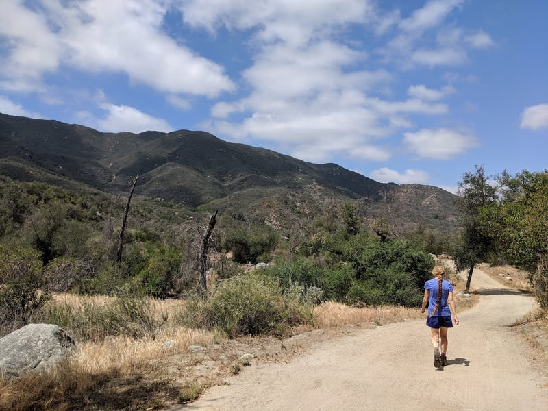 Hike Wilderness Gardens County Park