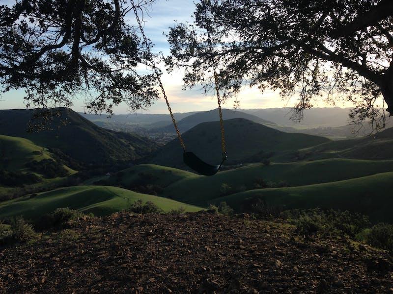 Swinging Single Weekend Sherpa