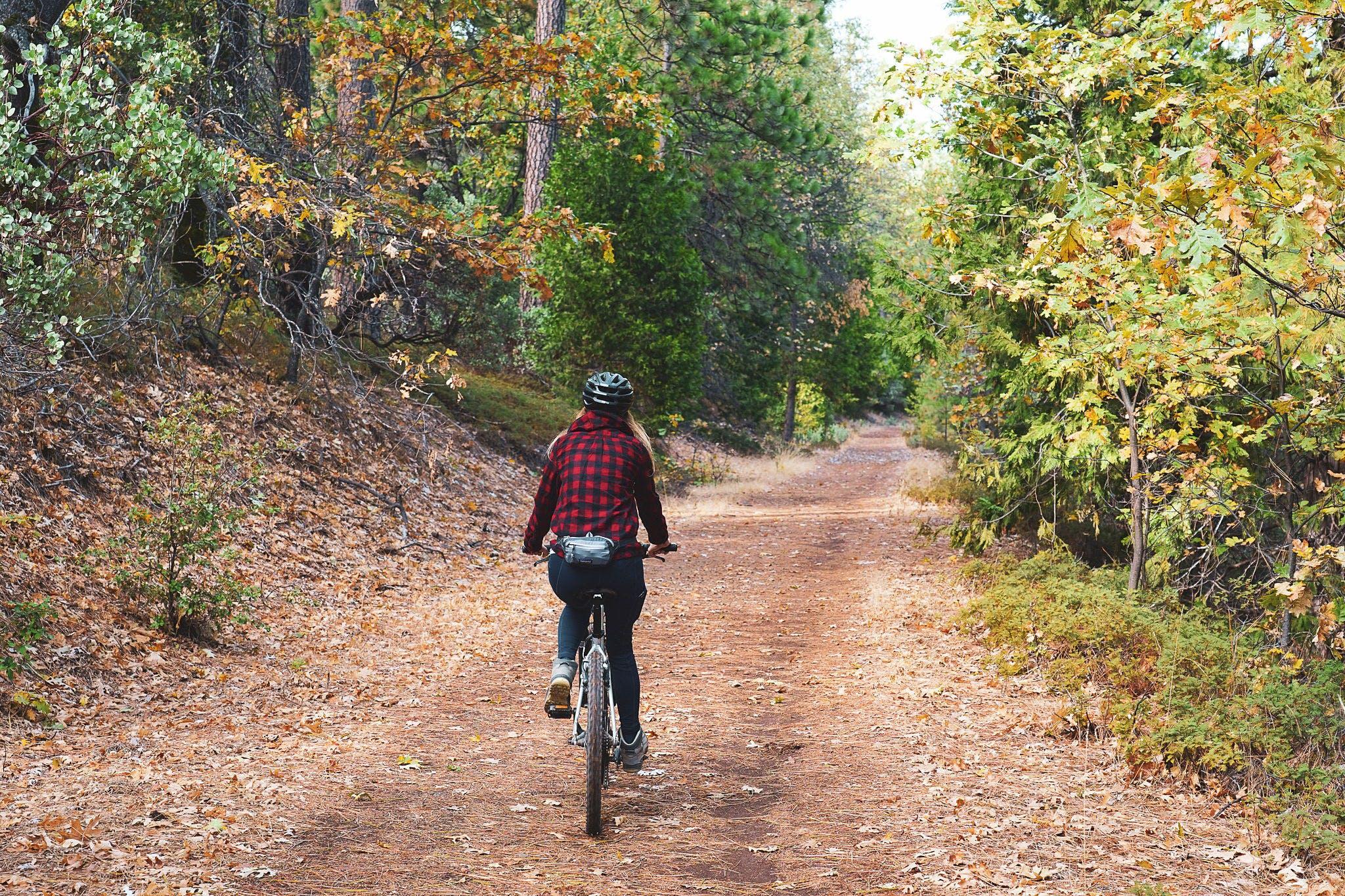 Bike The El Dorado Trail in Apple Hill Placerville