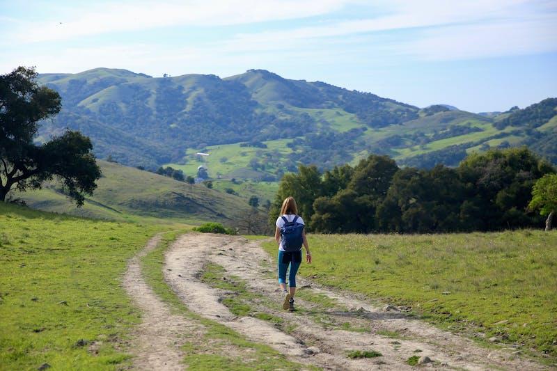 Hike Mount Burdell Marin County