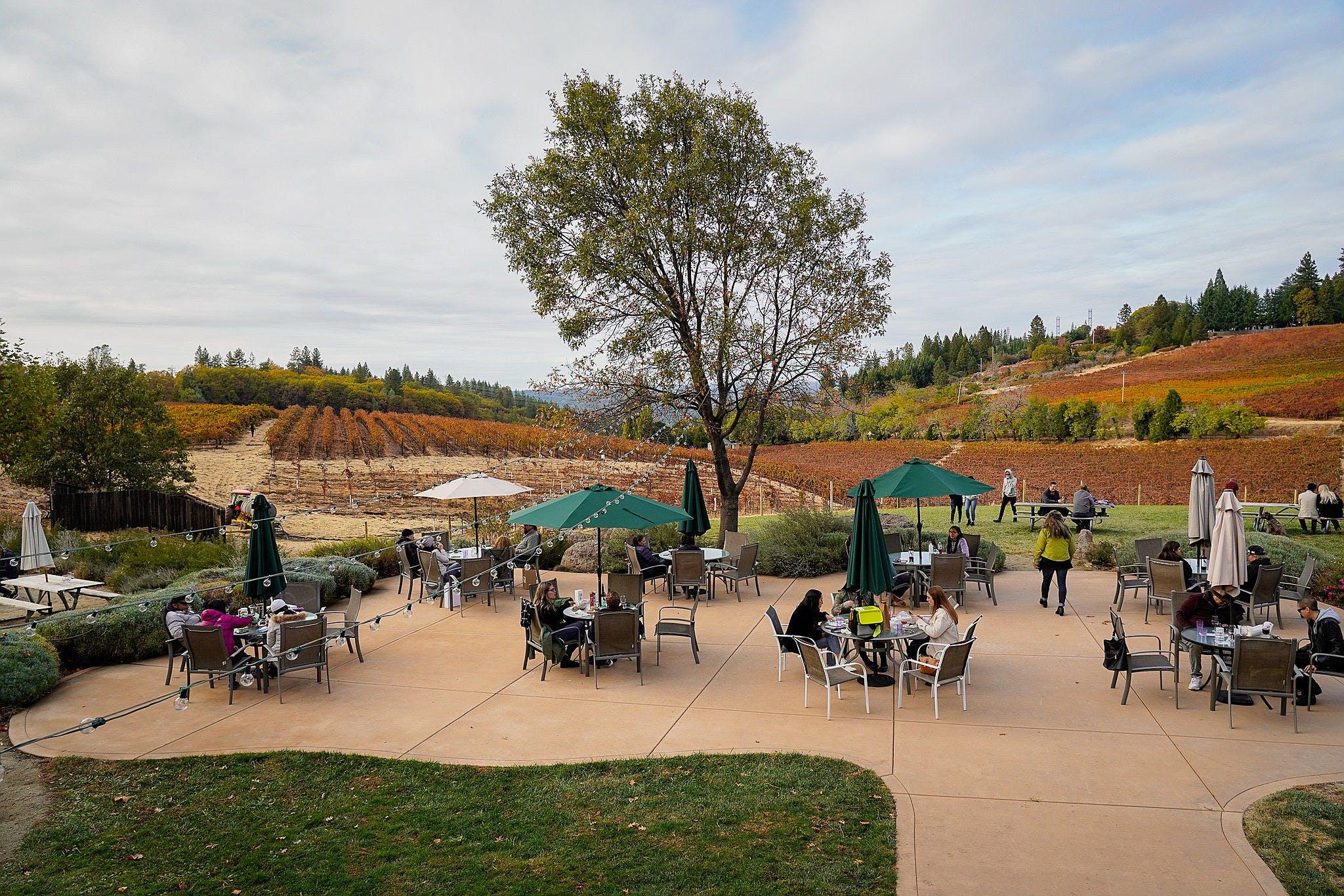 Lava Cap Winery Apple Hill Placerville