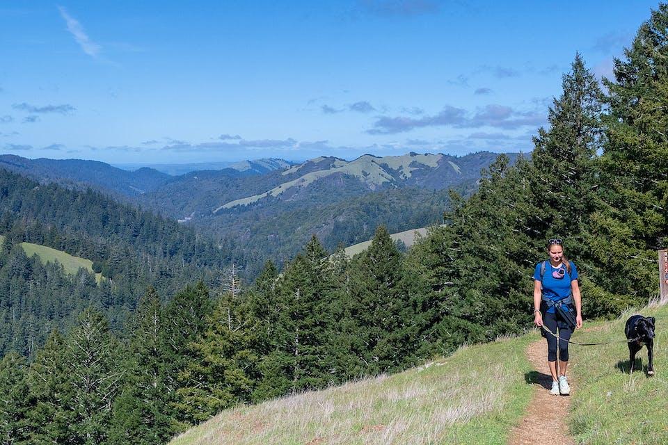 Woman walking dog over hills