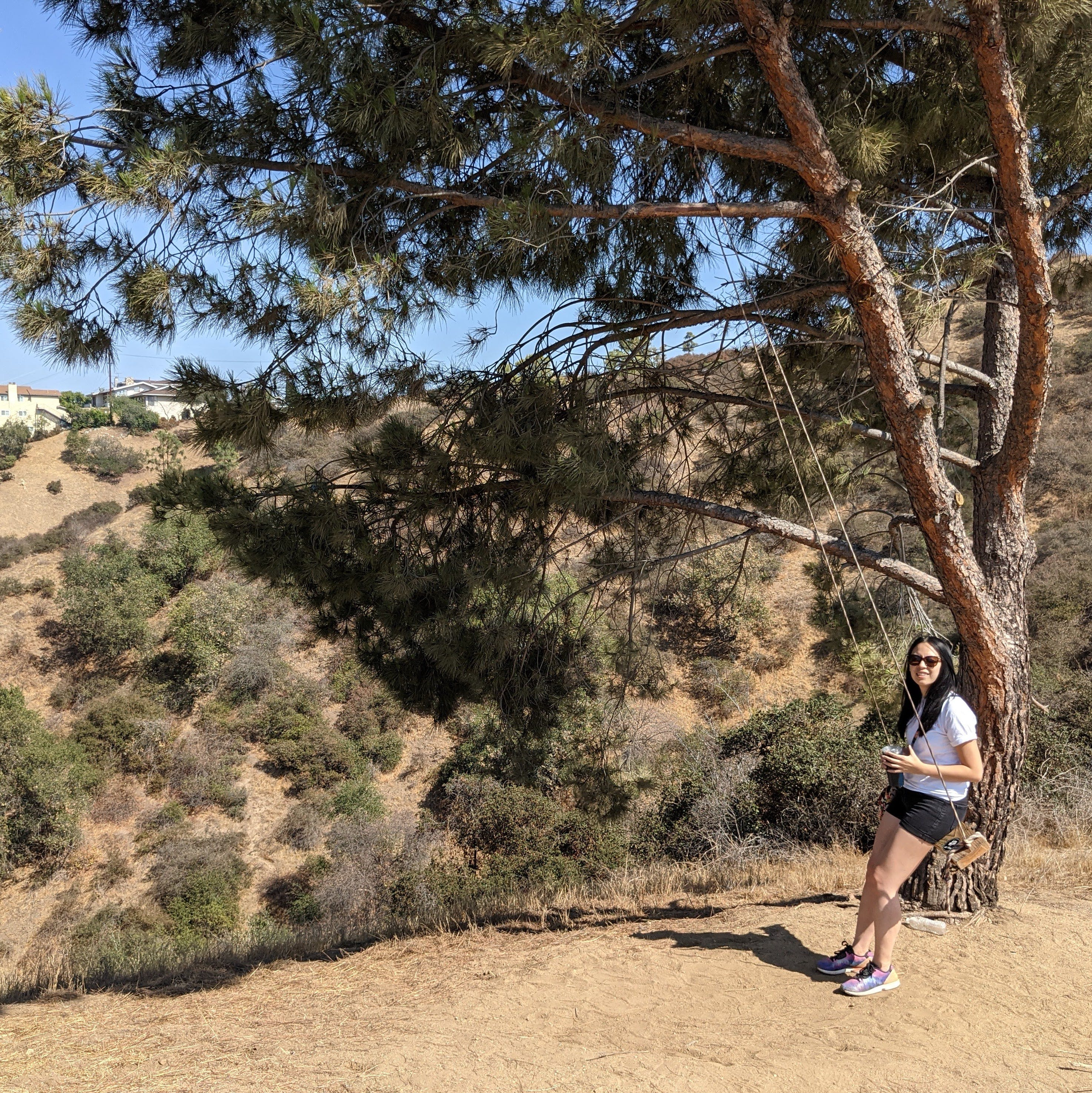 Hike at a tree swing at Fiji Hill in Los Angeles