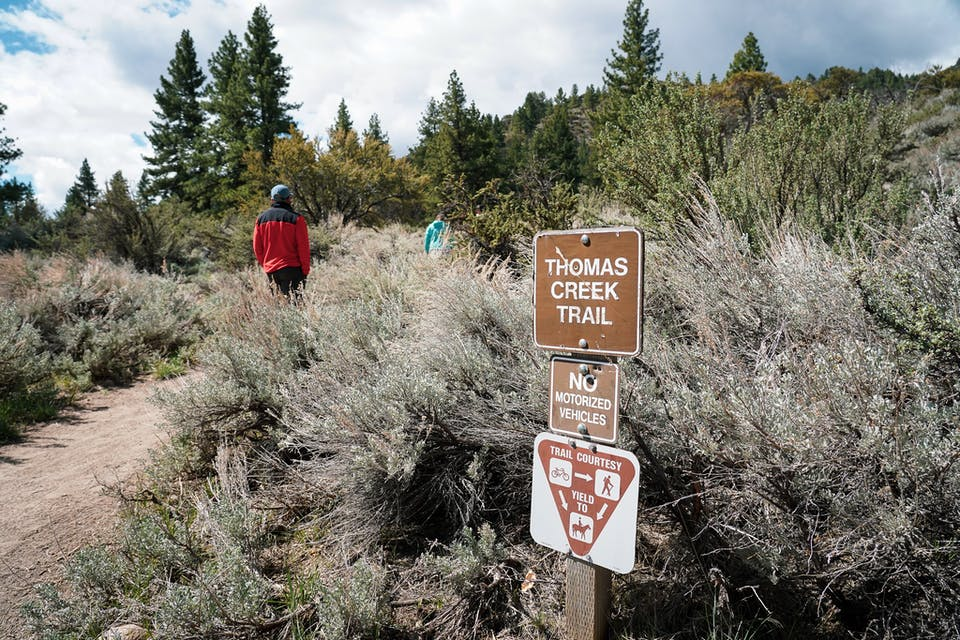 hiker on the Thomas Creek Trail near Reno