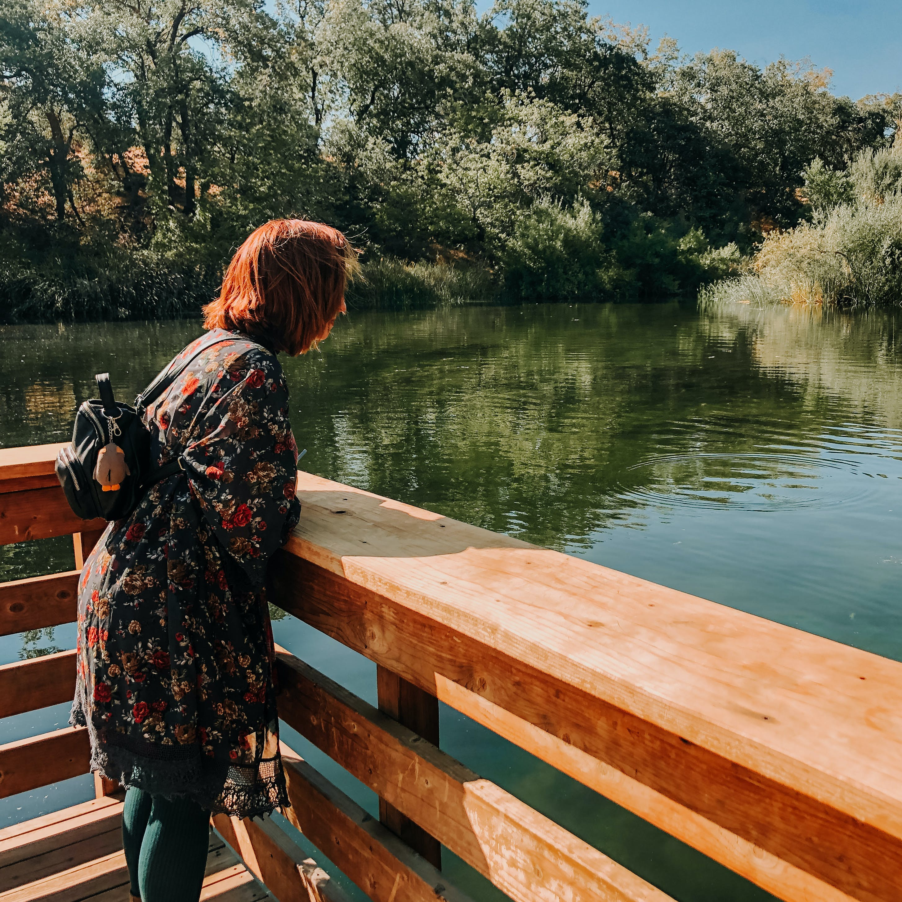 Hiker at a deck overlooking a wetland at Oak Glen Preserve in the Inland Empire Southern California