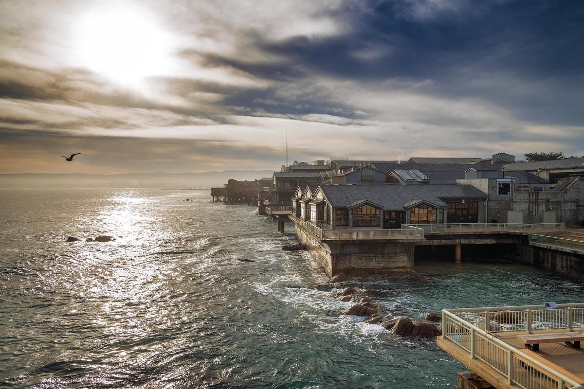Deck of Monterey Bay Aquarium