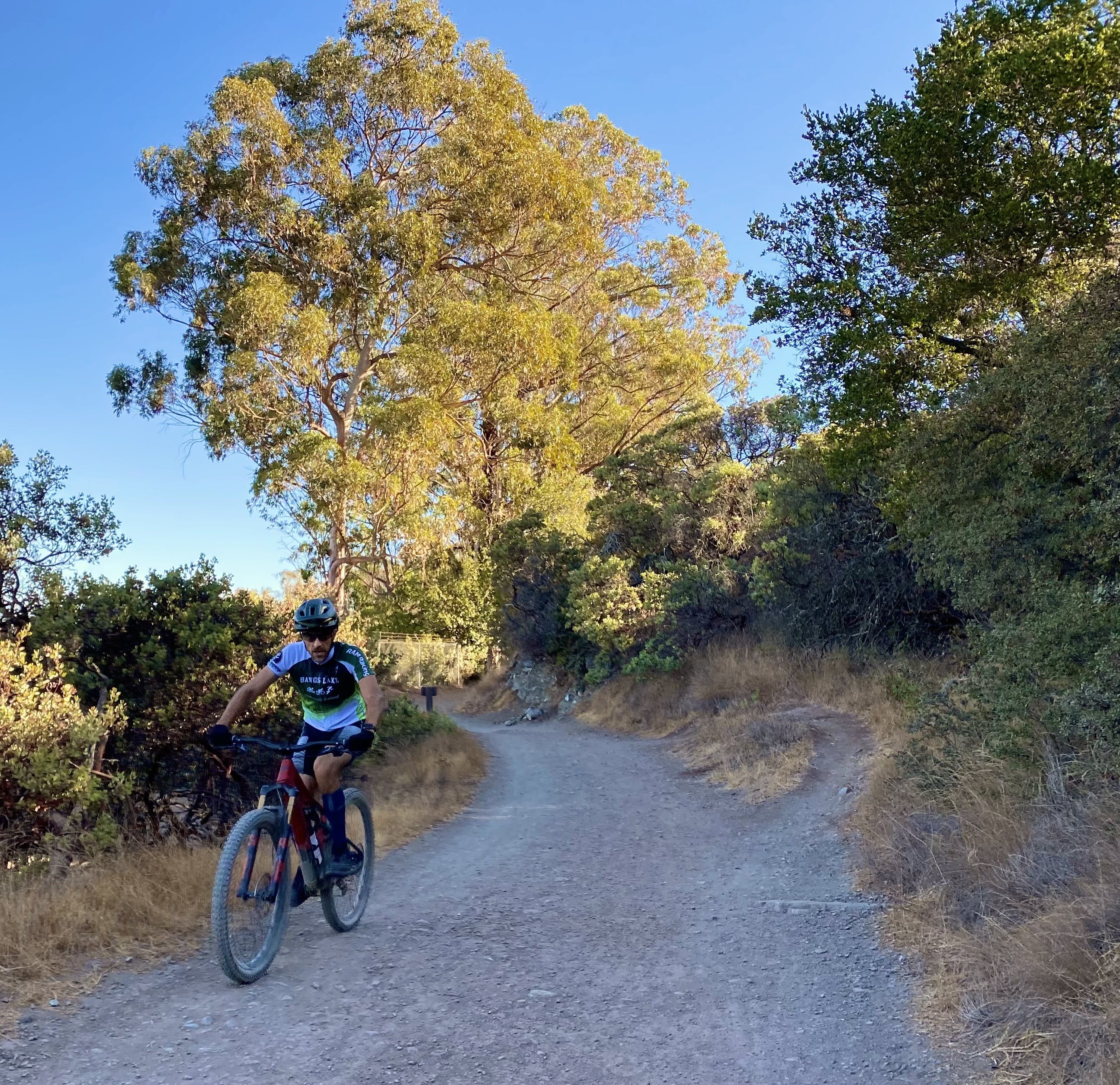 Mountain biker riding upa wide trail at St. Joseph's Hill in Los Gatos Bay Area